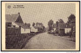 * LA HAMAIDE , ROUTE DE LESSINES , REPRODUCTION - Ellezelles