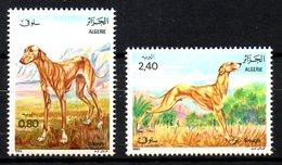 ALGERIE. N°798-9 De 1983. Lévrier. - Hunde