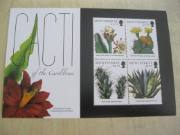 Montserrat 2012 Cacti Of The Caribbean - Montserrat