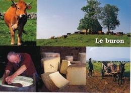 CPM LE BURON - EDITIONS DEBAISIEUX - Landbouwers