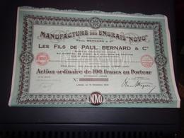 ENGRAIS NOVO  Paul Bernard (100 Francs) LOMME-NORD - Shareholdings