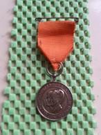 Medaille / Medal - Huwelijk Margriet En Pieter 10-1-1967 ( Vriezenveen ) - Royaux/De Noblesse