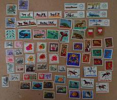 Lot De 300 Timbres De POLOGNE (2) - Collections