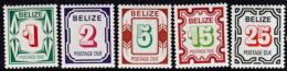 C0168 BELIZE 1976, SG D6-10 Postage Due Stamps  MNH - Belize (1973-...)