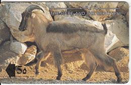 OMAN(GPT) - The Arabian Tahr, CN : 13OMNC/B(normal 0), Used - Oman