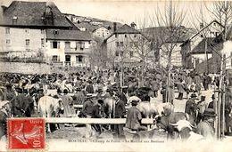 25 MORTEAU - CHAMP DE FOIRE - LE MARCHE AUX BESTIAUX - Autres Communes