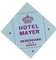 HOTEL MAYER DESENZANO LAC DE GARDA ANCIENNE ETIQUETTE D HOTEL POUR BAGAGES - Etiquettes D'hotels