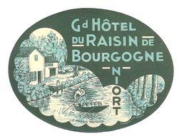 GRAND HOTEL DU RAISIN DE BOURGOGNE NIORT ANCIENNE ETIQUETTE D HOTEL POUR BAGAGES - Etiquettes D'hotels