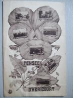 PENSEE D HERICOURT - France
