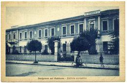 R.910.bis  SAVIGNANO SUL RUBICONE - Other Cities