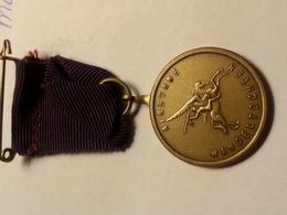 Medaille / Medal - Medaille Politie Sport Ver. Renkum Airborne Wandeltocht 6 - Netherland