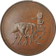 United Kingdom , Medal, Elgin, Georges IV, Thomason, TTB+, Bronze - Royaume-Uni
