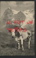 74 Fidèles à La Terre - Magnifique !!! - France