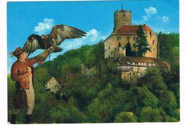 VALK-3   FALCONER With A GOLDEN EAGLE At Burg Guttenberg( Valkenier, Fauconnier, Falkner) - Caccia