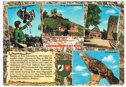 VALK-5   FALCONER At Burg Beilstein ( Valkenier, Fauconnier, Falkner) - Chasse