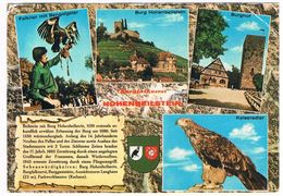 VALK-5   FALCONER At Burg Beilstein ( Valkenier, Fauconnier, Falkner) - Jacht