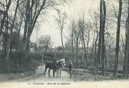 80,Somme, CHAULNES, Rue De La Sablière,Personnage Et Ses Chevaux,Scan Recto-Verso - Chaulnes