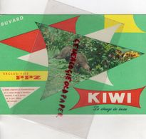 BUVARD KIWI- CIRAGE EXCLUSIVITE PPZ- ORIGINAIRE DE NOUVELLE ZELANDE - Chaussures
