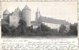 Allemagne - Gruss Aus Wurzen - Schloss 1903 - Wurzen
