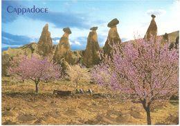 CAPPADOCIA CART.X ITALIA - Turchia