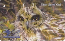 JERSEY ISL. - Short Eared Owl, CN : 61JERB(normal 0), Tirage %20000, Used - United Kingdom