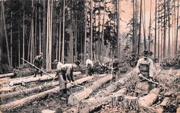 Allemagne - Holzhauer Im Thüringer Walde - H. Wollmer Friedrichroda - Bûcheron Forêt - Allemagne