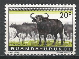 Ruanda-Urundi 1959. Scott #138 (M) Animal, Cape Buffaloes * - Ruanda-Urundi