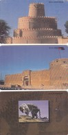 11769-N°. 3 SCHEDE TELEFONICHE - EMIRATI ARABI UNITI - USATE - United Arab Emirates