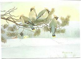Jaseurs Boréaux - Paavo Laine ( Carte De Vœux ) - Oiseaux