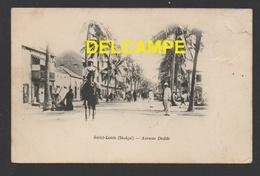 DF / AFRIQUE / SÉNÉGAL / SAINT-LOUIS / AVENUE DODDS / ANIMÉE / CIRCULÉE EN 1903 - Senegal