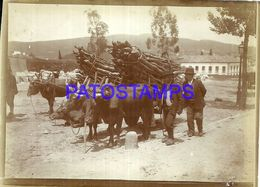 90381 SPAIN ESPAÑA SANTIAGO GALICIA COSTUMES COWS WITH LOADING AND MEN PHOTO NO POSTAL POSTCARD - Photographie