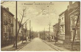 Watermael. Avenue Du Cor De Chasse. - Watermael-Boitsfort - Watermaal-Bosvoorde