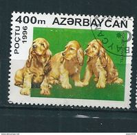 N° 266 Chien: Cocker Spaniel Timbre Azerbaidjan (1996) Oblitéré - Azerbaïdjan