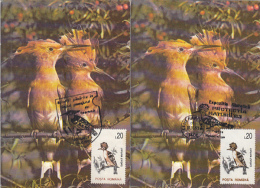 BIRDS, HOOPOE, CM, MAXICARD, CARTES MAXIMUM, 2X, 1993, ROMANIA - Climbing Birds