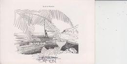 ILE DE LA REUNION  -  Carte 2 Volets  -  Ed S GELABERT  -  Photo Véritable  - - Non Classés