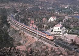 FRANCE - CPM  TGV 828 NICE-LYON- PARIS  PRES TRAYAS APRES INCENDIES DE L'ESTEREL ETE 87  / 2 - Treinen