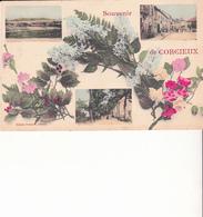 Souvenir De CORCIEUX - Corcieux