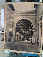 BASSANO DEL GRAPPA ILPONTE ALPINI ANIMATO  V1951 GP22739 Rifilata Lato - Vicenza