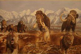 T18-032 ]     Prehistorics Animal Mammoth , China Pre-paid Card, Postal Statioery - Stamps
