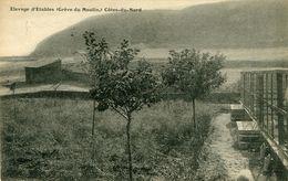 Etables élevage  Gréve Du Moulin  E Violet - Etables-sur-Mer