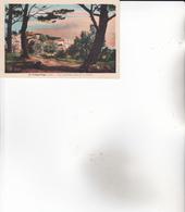 CPA 11 LA FRANQUI-PLAGE ,Vue Prise De La Chapelle. - Francia