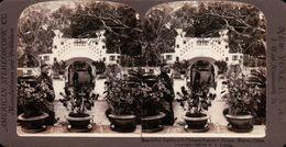 JARDIN MAGNIFIQUES DU PALAIS D'ÉTÉ CHINOIS EN CHINE ( PHOTO STEREOSCOPIC ) - Photos Stéréoscopiques