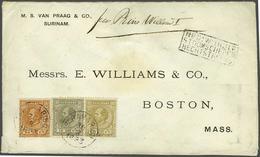 83 Surinam - Stamps