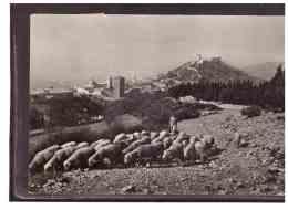 12168   -   ASSISI  -  PANORAMA DAL MONTE SUBASIO      /       VIAGGIATA - Italie