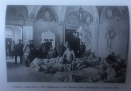 Photos Allemandes Recto Verso -313 Blessés Dans Chateau - Bois Le Prêtre Abres Déchiquettés - Optics