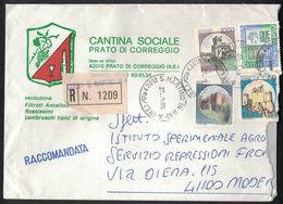 TY25   WINE VINO CANTINA SOCIALE PRATO DI CORREGGIO - BUSTA ILLUSTRATA RACCOMANDATA - Vini E Alcolici