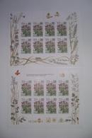 Russland 1995, Mi. 437 Kleinbogen Mit Und Ohne Zudruck Postfrisch/neuf Sans Charniere /MNH/** - 1992-.... Föderation