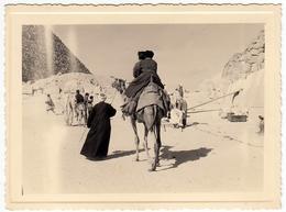 FOTOGRAFIA - EGITTO - CAMMELLI - CAMMELLIERI - LUOGO DA CLASSIFICARE - Vedi Retro - Mestieri