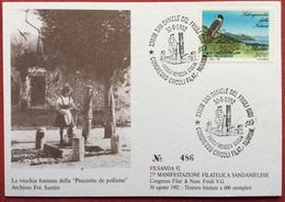 1992 SAN DANIELE DEL FRIULI FILSANDA CONGRESSO CIRCOLI FILATELICI NUMISMATICI FRIULI VENEZIA GIULIA - Manifestazioni