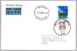 JUEGOS OLIMPICOS DE INVIERNO NAGANO 1998. Nagano, Japon. - Invierno 1998: Nagano